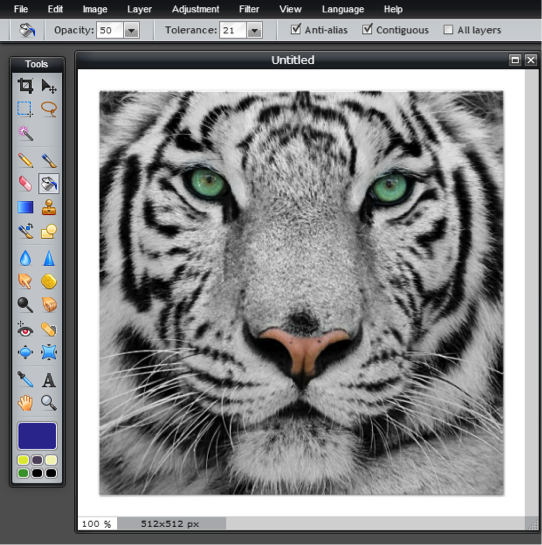 Fill Tool - Green Eyed White Tiger