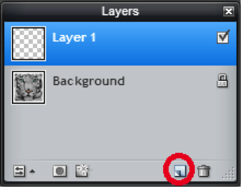 Fill Tool - Layers